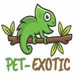 Pet Exotic Profile Picture