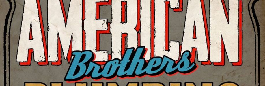 American Brothers LLC Cover Image