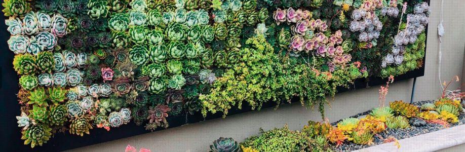 California Plant Walls Cover Image