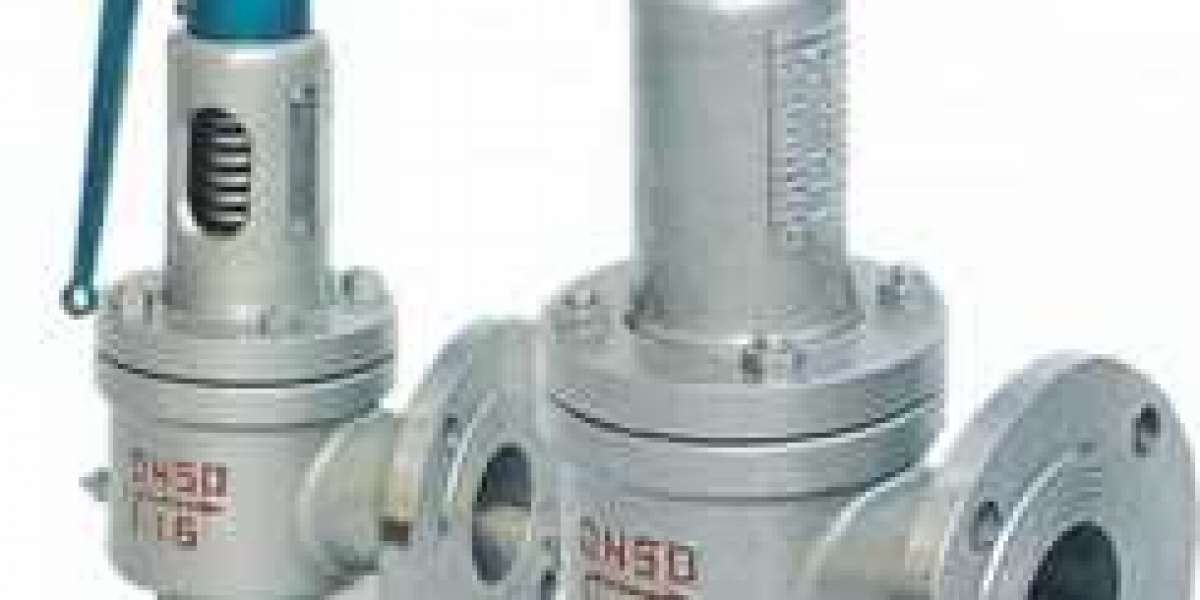 Safety Valve Manufacturer in Italy