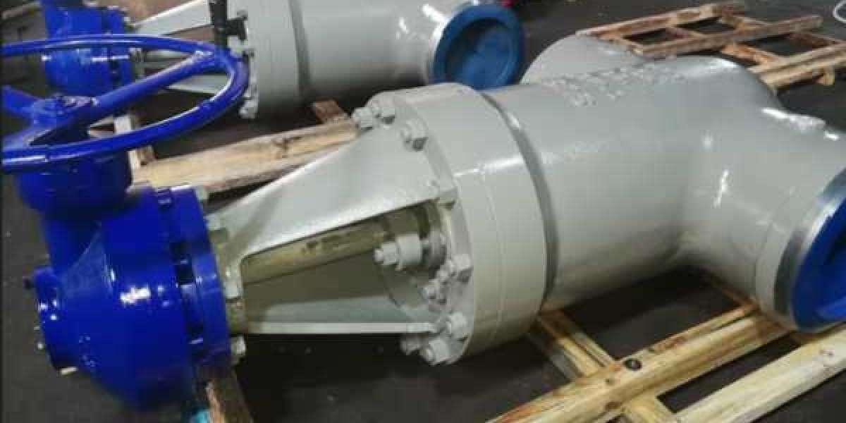 Pressure Seal Gate Valve Manufacturer in Italy